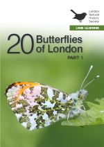 20 Butterflies in London Part 1
