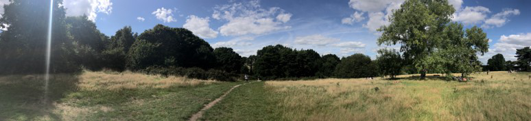 Hampstead Heath panoramic